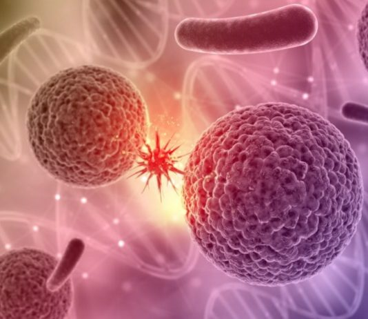 Cancer stem cells to be visible to the immune system