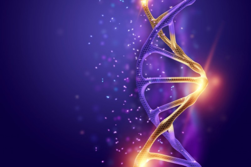 dna structure golden dna molecule violet background ultraviolet 99433 10 - Mutations in tuberculosis bacteria cause resistant to drugs