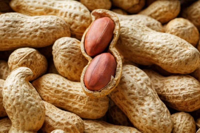 peeled peanut well peanuts peanuts background textures 94046 2 - Nagendra Gadamsetty