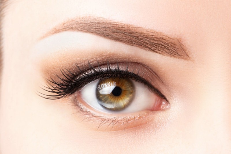 female eye with long eyelashes beautiful makeup light brown eyebrow close up 100739 35 - Site-Wide Activity