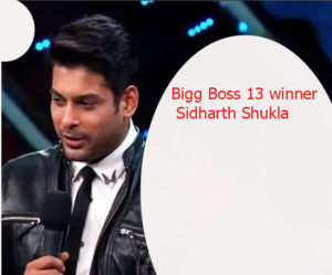 Bigg Boss 13 winner Sidharth Shukla 11 300x249 - Bigg Boss 13 winner Sidharth Shukla