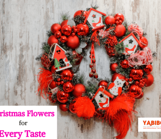 10 Perfect Christmas Flowers for Every Taste