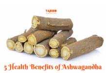 5 Health Benefits of Ashwagandha