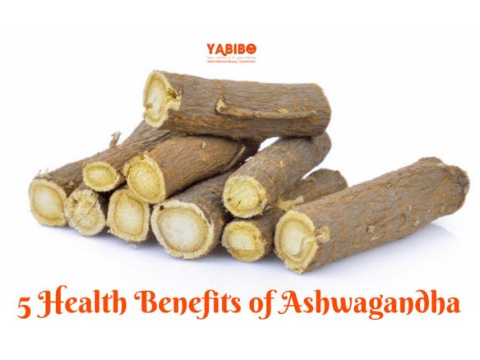 5 Health Benefits of Ashwagandha
