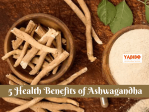 Dos and donts during pregnancy 2021 02 15T160537.174 300x225 - 5 Health Benefits of Ashwagandha