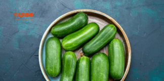 10 Health Benefits of Cucumber