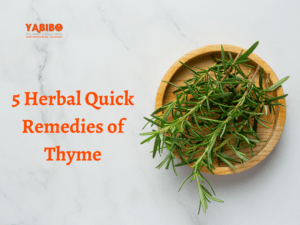 Coconut oil 93 300x225 - 5 Herbal Quick Remedies of Thyme