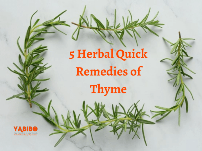 5 Herbal Quick Remedies of Thyme